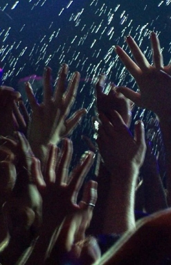 festival crowd (2)